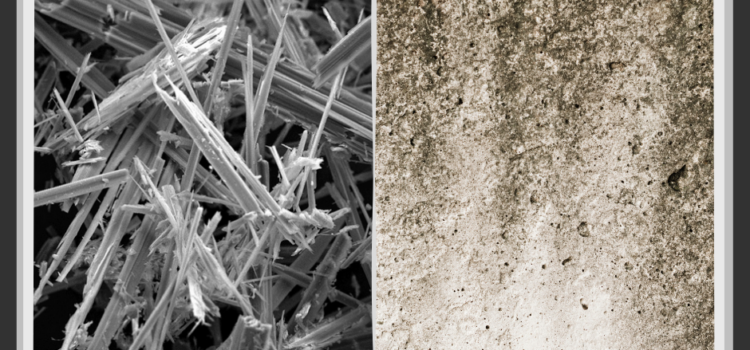 Asbestos compared to Black Mould